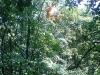 Sriebrna - 27.7.2008 - Jarda